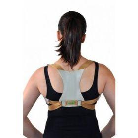 Espaldeira-Simples-para-Postura.jpg