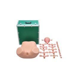 Simulador-Ginecologico-com-Utero-Saudavel-e-Patologico-Sdorf.jpg