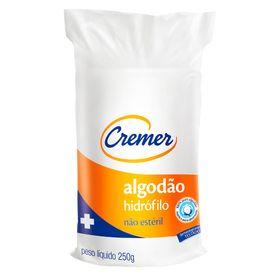 Algodao-Cremer-Hidrofilo--Cx-24-UN---250g-.jpg